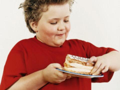 centrosaludnutricional.com -  Decálogo para prevenir la obesidad infantil - Centro Salud Nutricional, consulta privada de Fernando Rojo Fernández, dietista-nutricionista, dietas personalizadas en Gijón, Asturias